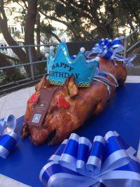 百褔生日乳豬 - 藍色王子豬