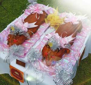 西式婚宴乳豬